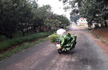 Bán đất Phường Tân Đồng, Thị xã Đồng Xoài