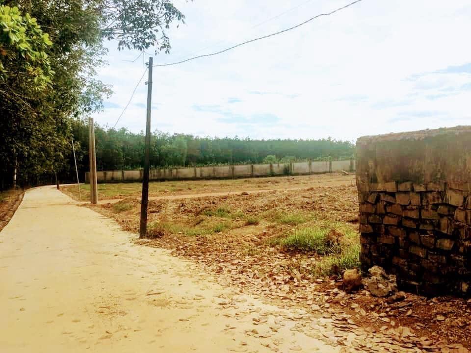 Bán đất phường Tân Đồng, Thị xã Đồng Xoài, Tỉnh Bình Phước