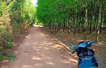 Đất rẻ Thuận phú Đồng Xoài Bình Phước