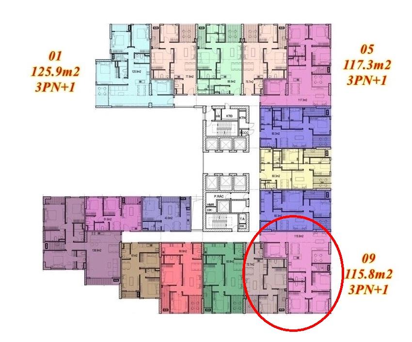 Mặt bằng căn hộ Imperium Town 3 Phòng Ngủ + 1 1