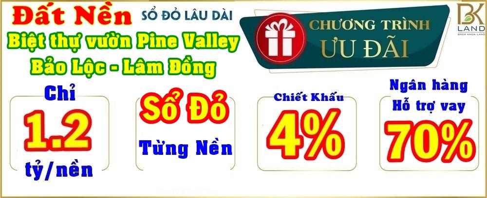 chuong-trinh-uu-dai-du-an-pine-valley