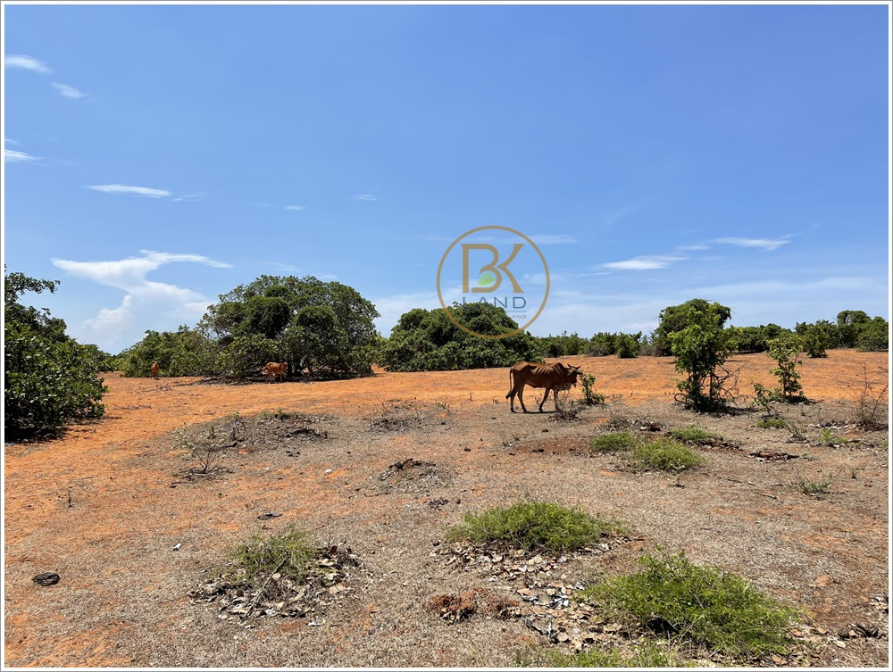 Danh sách sản phẩm bán đất sổ đỏ Bình Thuận đáng đầu tư 2021 15
