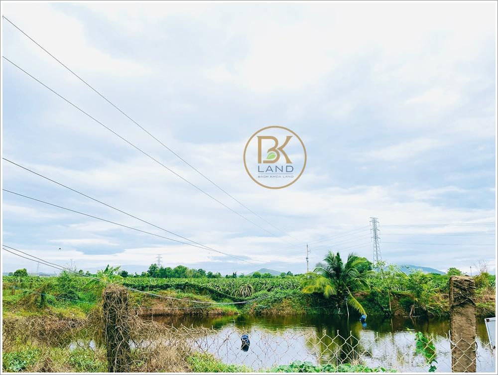 Danh sách sản phẩm bán đất sổ đỏ Bình Thuận đáng đầu tư 2021 6