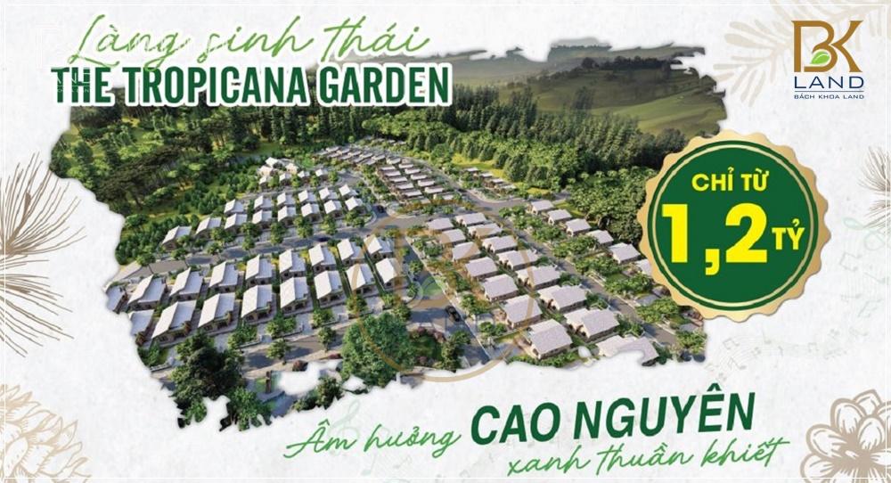 Dự án Bất động sản Lâm Đồng 9